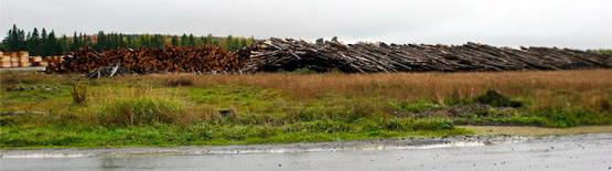 Log pile, Ashland ME